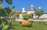 Casa vacanza Noci Puglia Valle d'Itria - Riferimento: 3005
