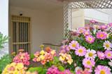 Casa con piscina Torre Mozza - Riferimento: 633